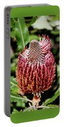 Banksia In Red Portable Battery Charger