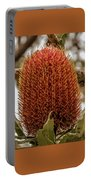 Banksia Serrata 2 Portable Battery Charger