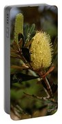 Banksia Syd01 Portable Battery Charger