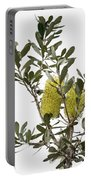 Banksia Syd02 Portable Battery Charger