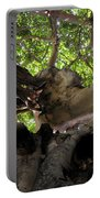 Banyan Sky Portable Battery Charger