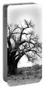 Baobab Landscape Portable Battery Charger