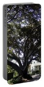 Baobab Trees In Los Angeles Portable Battery Charger