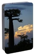 Baobabs And Storm Clouds Portable Battery Charger