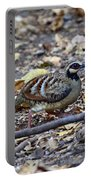 Bar-backed Partridge 2 Portable Battery Charger
