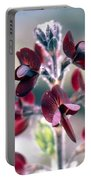 Barbed Thermopsis Or Black Pea Portable Battery Charger