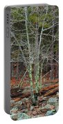 Bare Tree And Boulders In Mark Twain Forest Portable Battery Charger