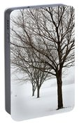 Bare Winter Trees Portable Battery Charger