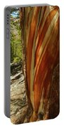 Bare Wood Portable Battery Charger