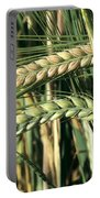 Barley, Green Stage Portable Battery Charger