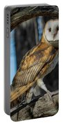 Barn Owl Framed In Cottonwood Portable Battery Charger
