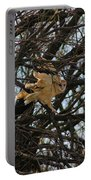 Barn Owl In A Tree Portable Battery Charger