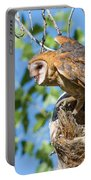 Barn Owl Owlet Climbs Out Of Nest Portable Battery Charger