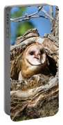 Barn Owl Owlet Says Hello To The World Portable Battery Charger