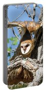 Barn Owl Owlet Stretches High Portable Battery Charger