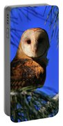Barn Owl Stare Portable Battery Charger