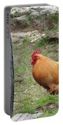 Barnyard Chicken Portable Battery Charger