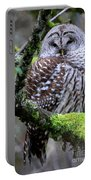 Barred Owl In Tree Portable Battery Charger