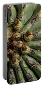 Barrel Cactus Blossom Portable Battery Charger