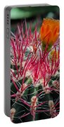 Barrel Cactus II Portable Battery Charger