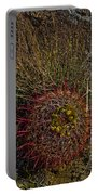 Barrel Cactus Top View Portable Battery Charger