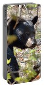 Bashful Black Bear Portable Battery Charger