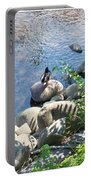 Basking On A Rock Portable Battery Charger