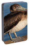 Basking Pelican Portable Battery Charger