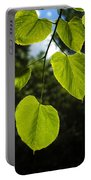 Basswood Leaves Against Dark Forest Background Portable Battery Charger