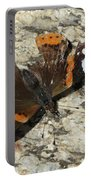 Battered Butterfly Portable Battery Charger