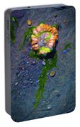 Beach Barnacle Flower Portable Battery Charger