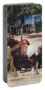 Beach Horses Portable Battery Charger