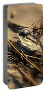 Beach Still Life Portable Battery Charger by Susanne Van Hulst