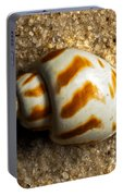 Beached Shell Portable Battery Charger