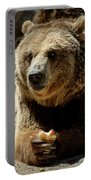 Bear 5 Portable Battery Charger
