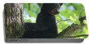 Bear Cub In Tree Portable Battery Charger