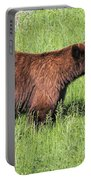Bear Eating Daisies Portable Battery Charger