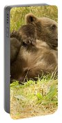Bear Portable Battery Charger