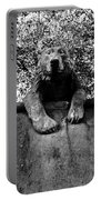 Bear On The Wall Portable Battery Charger