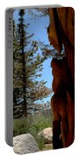 Bear Watch Portable Battery Charger