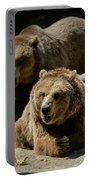 Bears 6 Portable Battery Charger