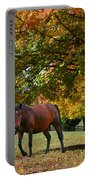 Beautiful Bay Horse In Fall Portable Battery Charger