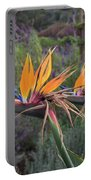 Beautiful Bird Of Paradise Flower In Bloom Portable Battery Charger