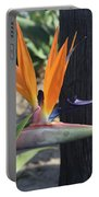 Beautiful Bird Of Paradise Flower In Full Bloom  Portable Battery Charger