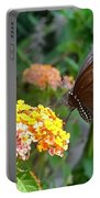 Beautiful Black Swallowtail Butterfly Portable Battery Charger