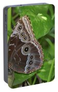 Beautiful Blue Morpho Butterfly Resting In A Garden  Portable Battery Charger