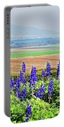 Beautiful Bluebonnets Portable Battery Charger