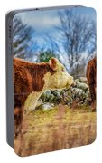 Beautiful Bovine With Side Eye Portable Battery Charger