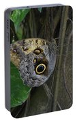 Beautiful Brown Morpho Butterfly In A Lush Garden  Portable Battery Charger