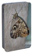 Beautiful Brown Morpho Butterfly Resting In A Butterfly Garden  Portable Battery Charger